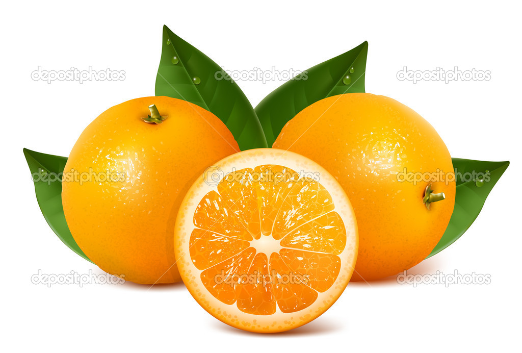 Vector fresh ripe oranges with leaves