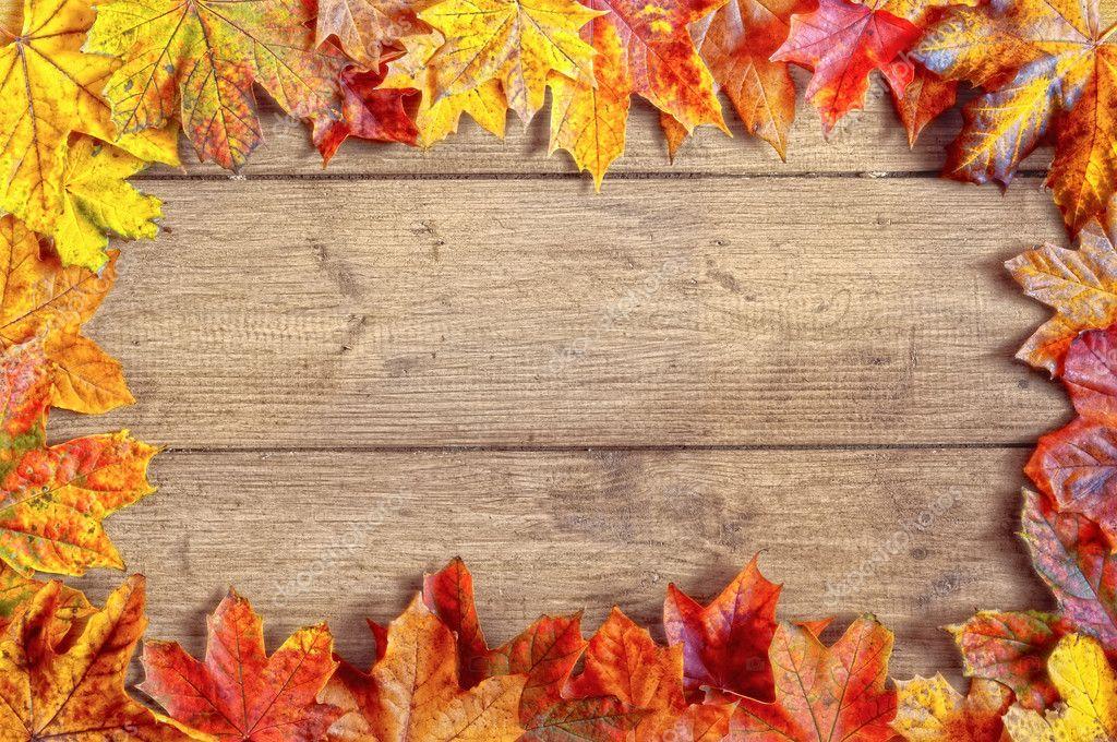 autumn leaf border stock photo springfield 11466303