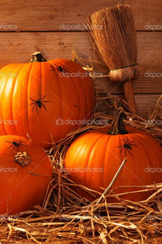 Pumpkins Crawling With Spiders