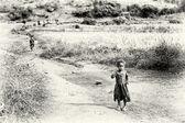 Egy etióp lány sétál a mező