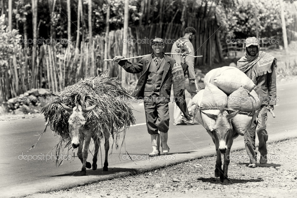 Two Ethiopian men follow the loaded donkey