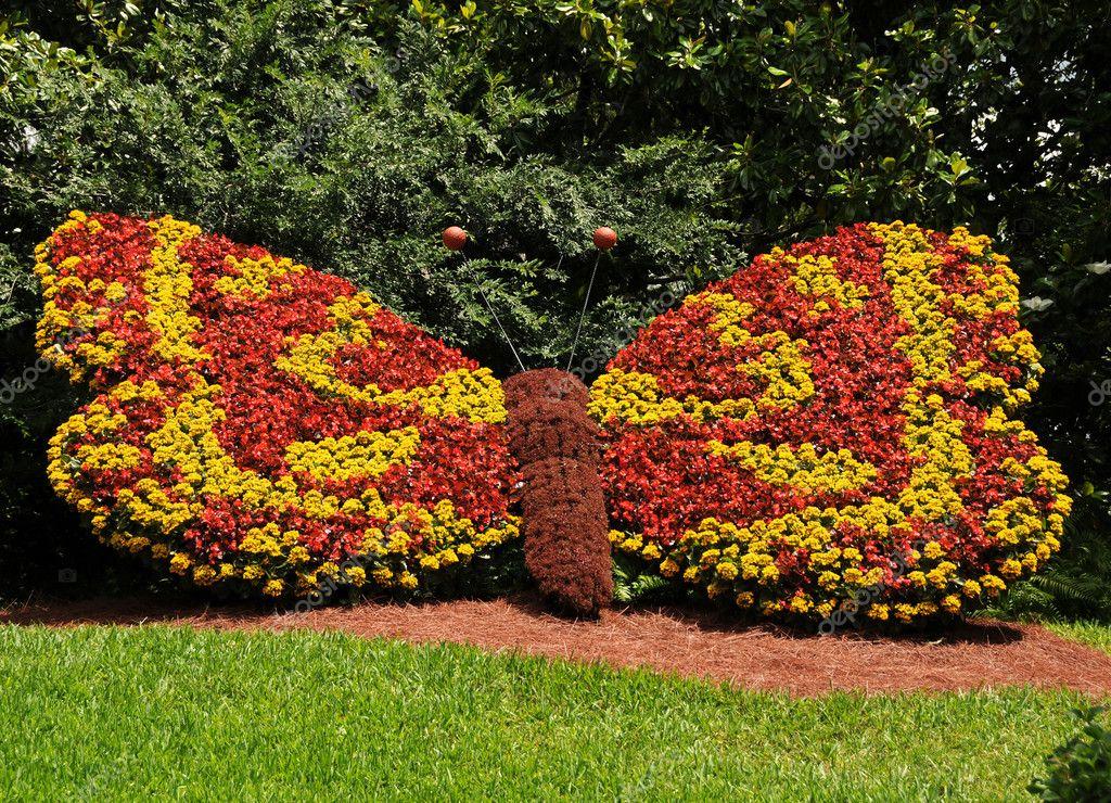 Kwiat Ogrod Zdjecie Stockowe C Icholakov01 11656897