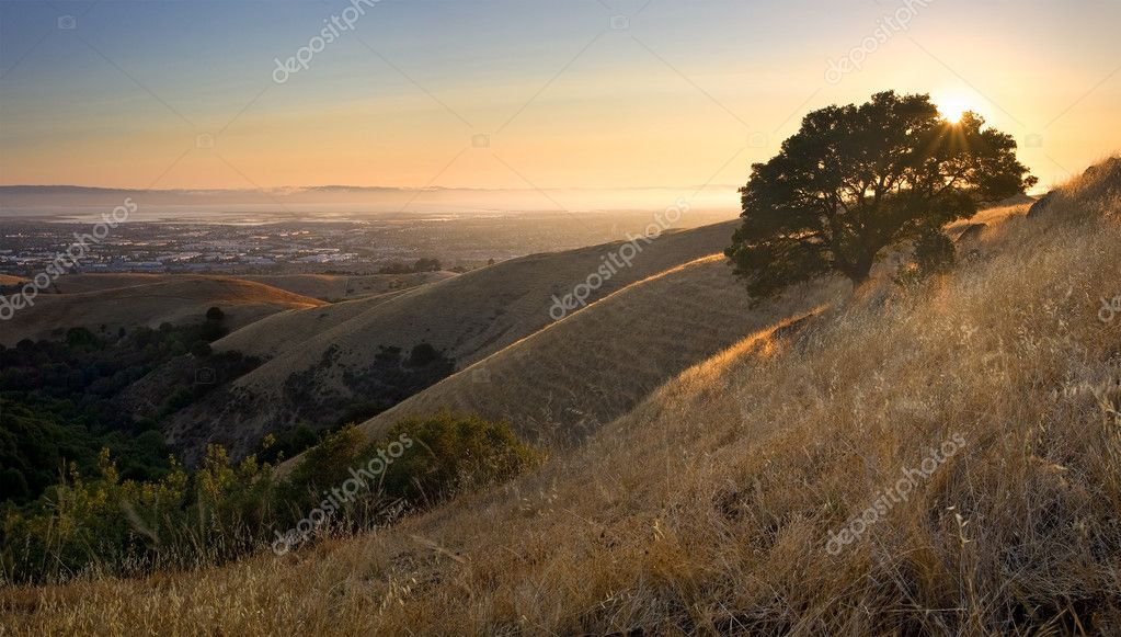 Beautiful view of East Bay and San Francisco Bay in summer