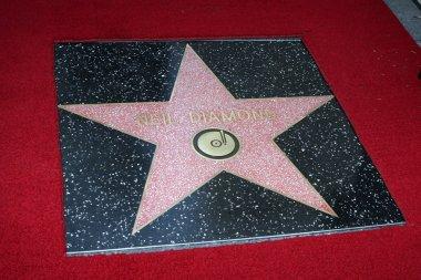 Neil Diamond WoFame Star