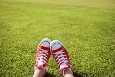 Feet in sneakers in green grass stock vector