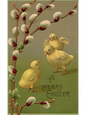 A vintage Easter postcard of a branch of pussy willow and three chicks