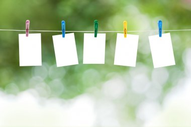 Blank photos hanging on a clothesline, summer defocus background