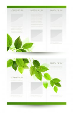 Vector design of eco booklet with branch of fresh green leaves
