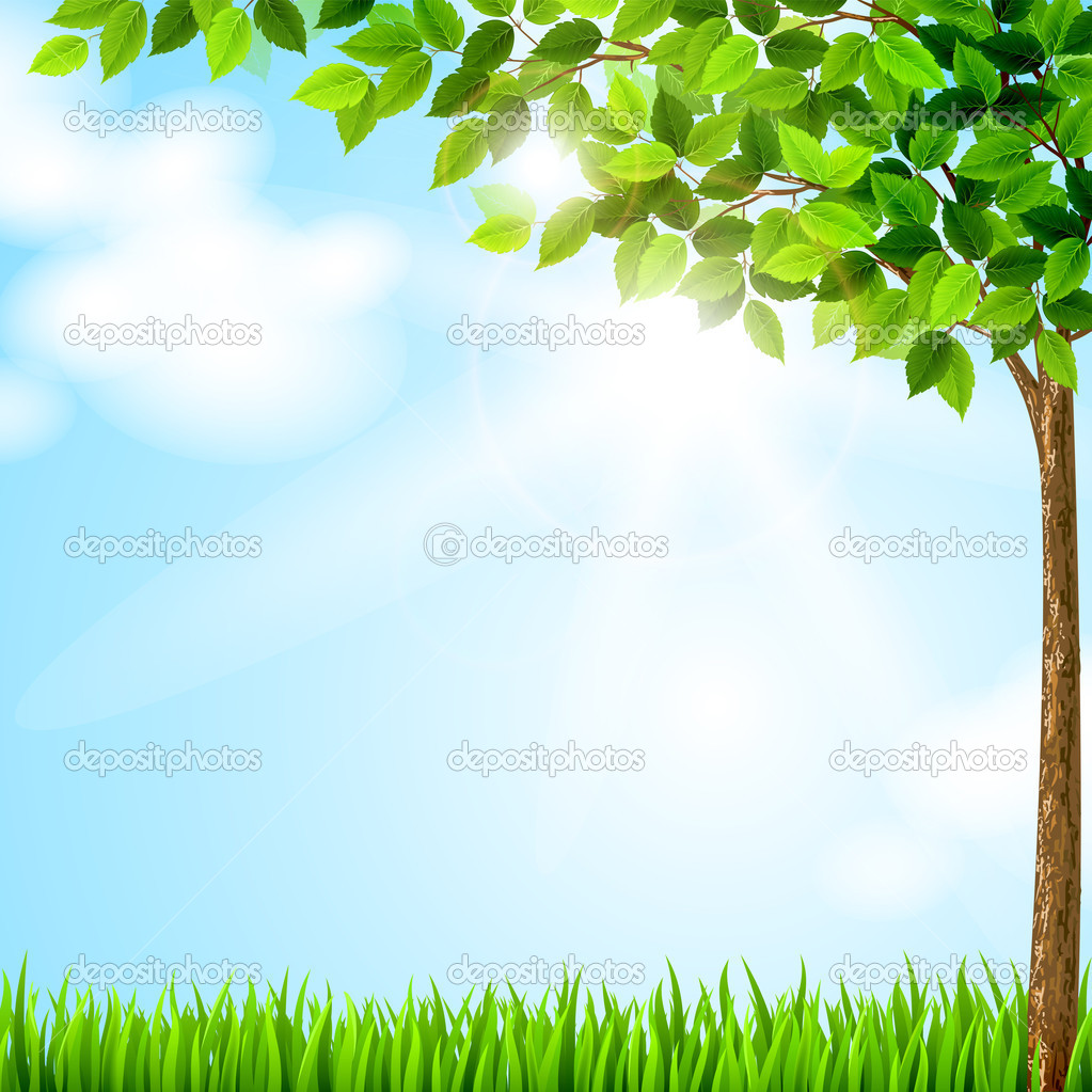 Tree with green leaves growing on the glade