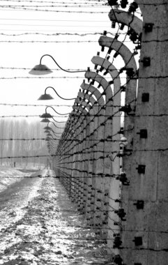 Old style photo of Auschwitz camp, electric fence