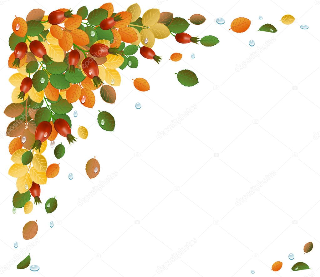 Autumn leaves with rose-hips, background.