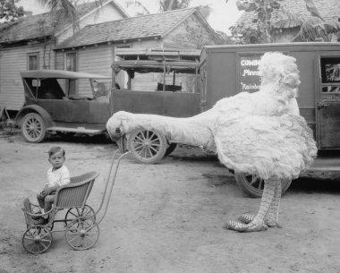 Fake ostrich pushing boy in stroller