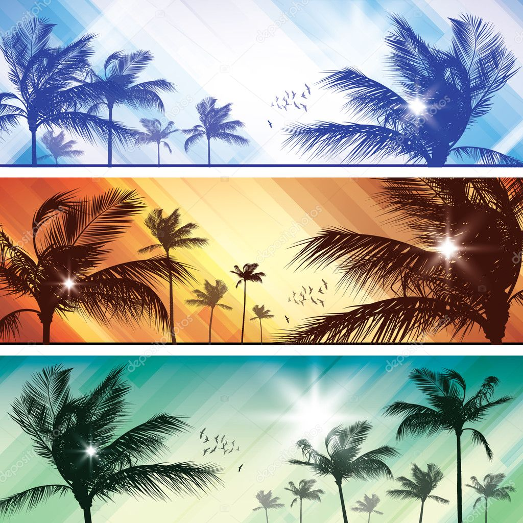 Palm tree header