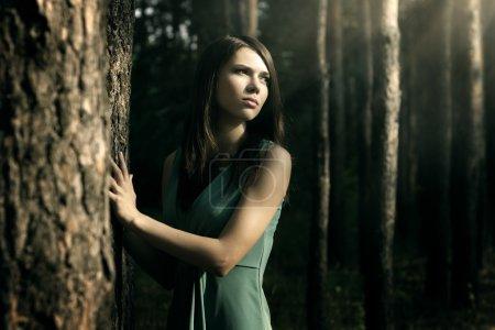Photo pour Fille dans la forêt de féerie. fond sombre - image libre de droit