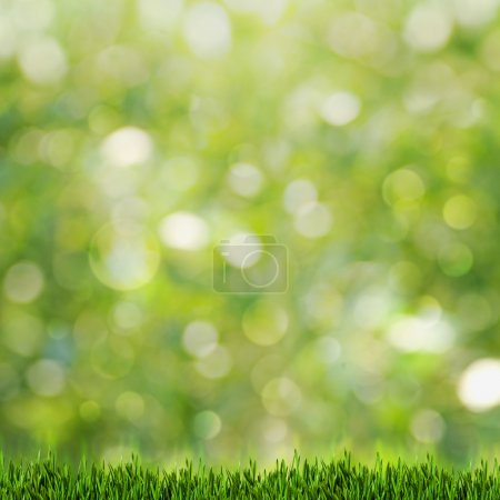 Photo for Green grass over abstract summer backgrounds with beauty bokeh - Royalty Free Image
