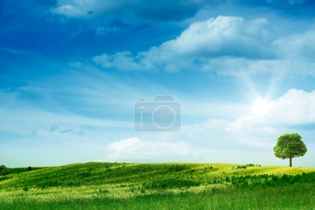 Photo for Green hills. Abstract summer backgrounds. - Royalty Free Image