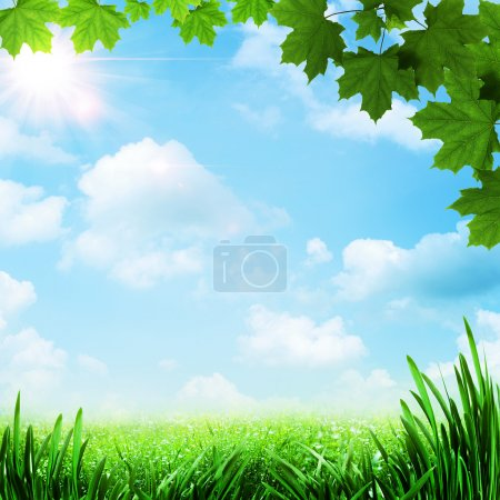 Photo for Optimistic meadow. Abstract natural backgrounds - Royalty Free Image