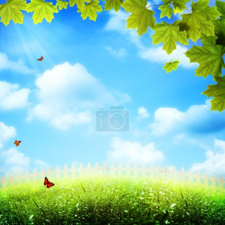 art abstract natural backgrounds with beauty