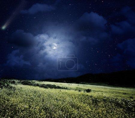 Photo pour Pré nocturne. Nature estivale avec comète et pleine lune - image libre de droit