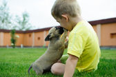Little boy kissing with his cute dog