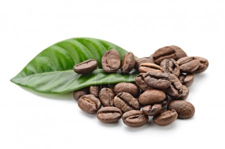 Photo for Coffee grains and leaves - Royalty Free Image