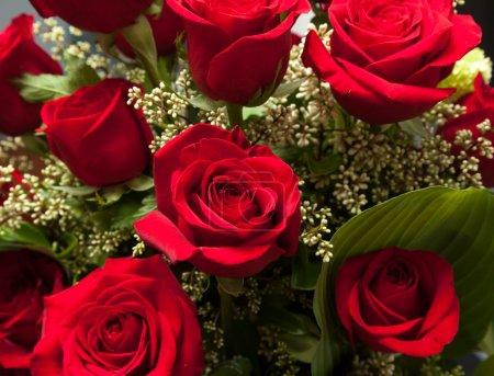 Photo pour Vue rapprochée détaillée de roses rouges en velours dans un bouquet de valentines romantique - image libre de droit