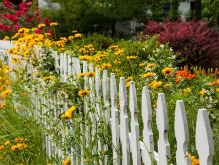 Wild flowers growing over white picket fence