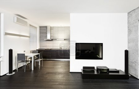 Modern minimalism style kitchen and drawing room interior
