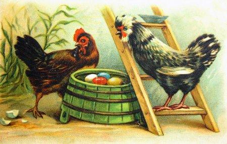 Vinyage postcard, antique postcard