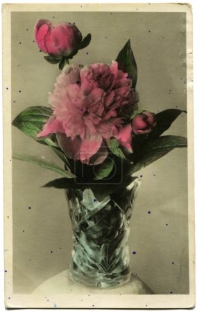 Peonies - hand-painted with aniline dyes picture