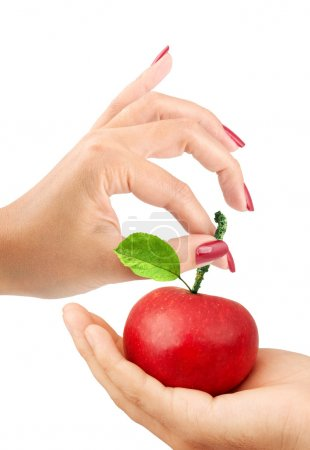 Photo for Girl gives the man an apple isolated on a white background - Royalty Free Image