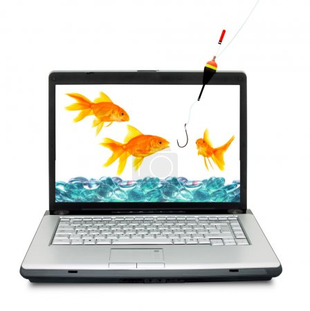 Goldfishes are in a laptop. Fishing,