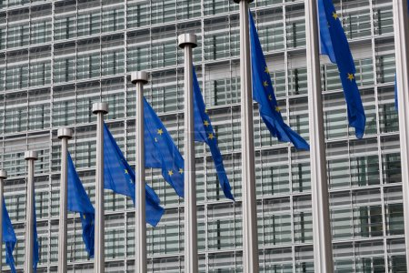 Photo for European Union flags against the European Parliament building - Royalty Free Image