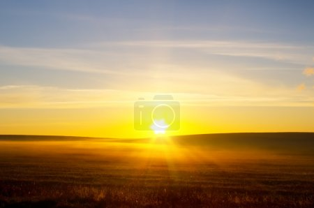 Sunrise over summer field.