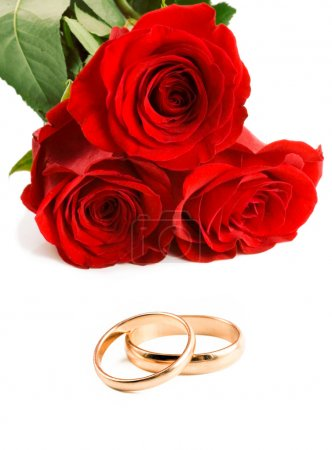 Two gold wedding bands beside a red roses.