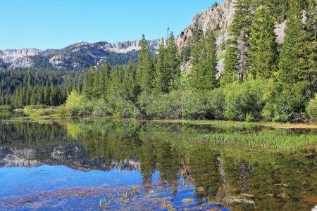Photo pour Un beau lac peu profond dans les montagnes de Californie. dans l'eau lisse surface reflète les forêts de conifères - image libre de droit