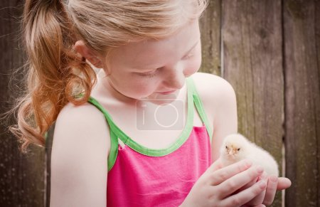 Photo for Beautiful girl with little chicken - Royalty Free Image