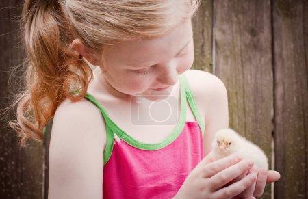 Photo pour Belle fille avec petit poulet - image libre de droit