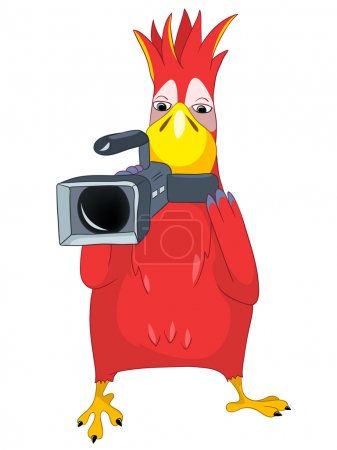 Illustration for Cartoon Character Funny Parrot Isolated on White Background. Cameraman. Vector EPS 10. - Royalty Free Image