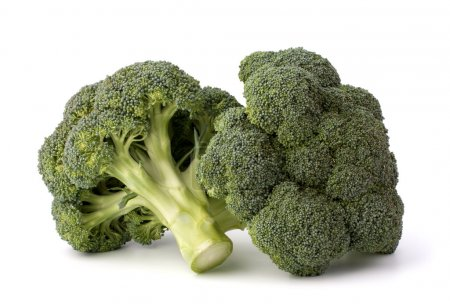 Photo for Broccoli vegetable isolated on white background - Royalty Free Image