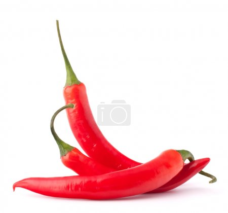 Photo for Hot red chili or chilli pepper still life isolated on white background cutout - Royalty Free Image