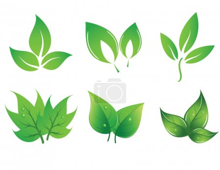 Illustration for Set of green vector leaves - Royalty Free Image