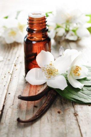 Photo pour Huile essentielle de fleur de jasmin et de vanille - image libre de droit