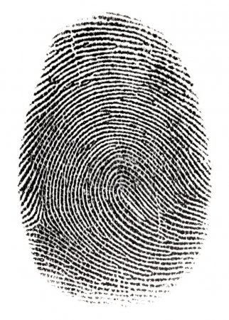 Real fingerprint