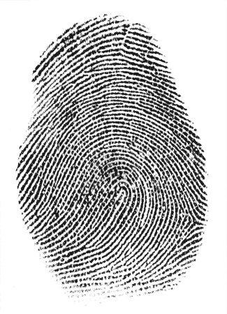Real fingerprint