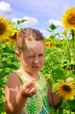 Photo for Little girl on sunflowers field - Royalty Free Image