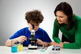 Boy examining preparation under the microscope