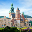 The Basilica of St Stanislaw and Vaclav or Wawel C...