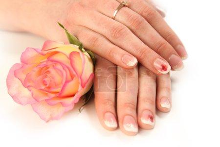 Manicure on white