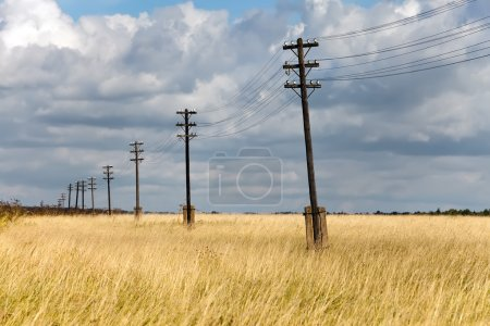 Old wooden electric pillar in the field